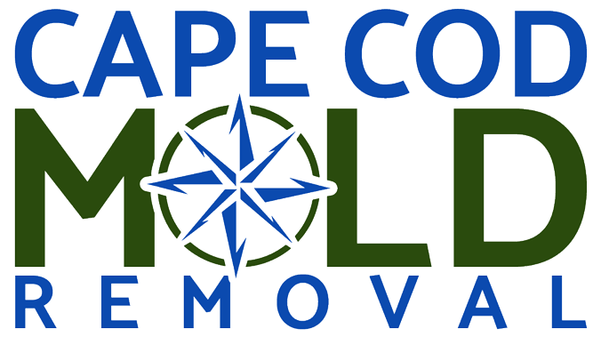 cape cod mold removal